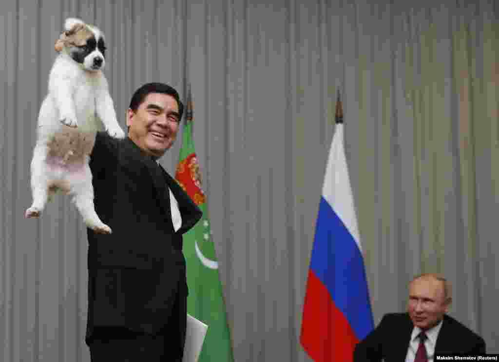 Türkmen prezidenti Gurbanguly Berdimuhamedow (çepde) rus kärdeşi Wladimir Putione sowgat getiren güjügini galdyryp dur. Soçi, 11-nji oktýabr. (Reuters/Maxim Shemetov)