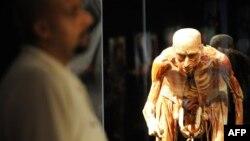 """Синагпур, октябри соли 2009. Тамошобине аз як намунаи намоишгоҳи """"Дунёи бадан"""" дидан мекунад"""