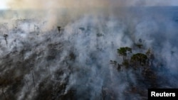 An aerial view of a forest fire in the Amazon on August 23
