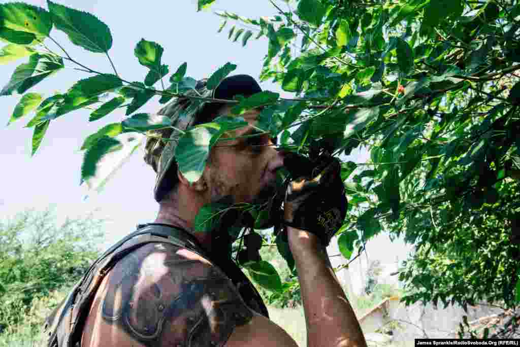 A soldier picks fruit off a tree while carrying supplies back to his unit's house.