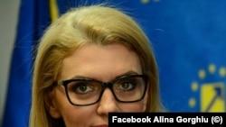 Senatorul Alina Gorghiu, inițiatorul proiectului de lege
