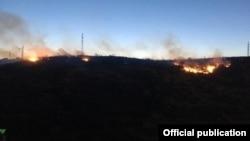 Пожар в парке Цицернакаберда, июль 2019 г․