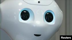 Адам-робот.