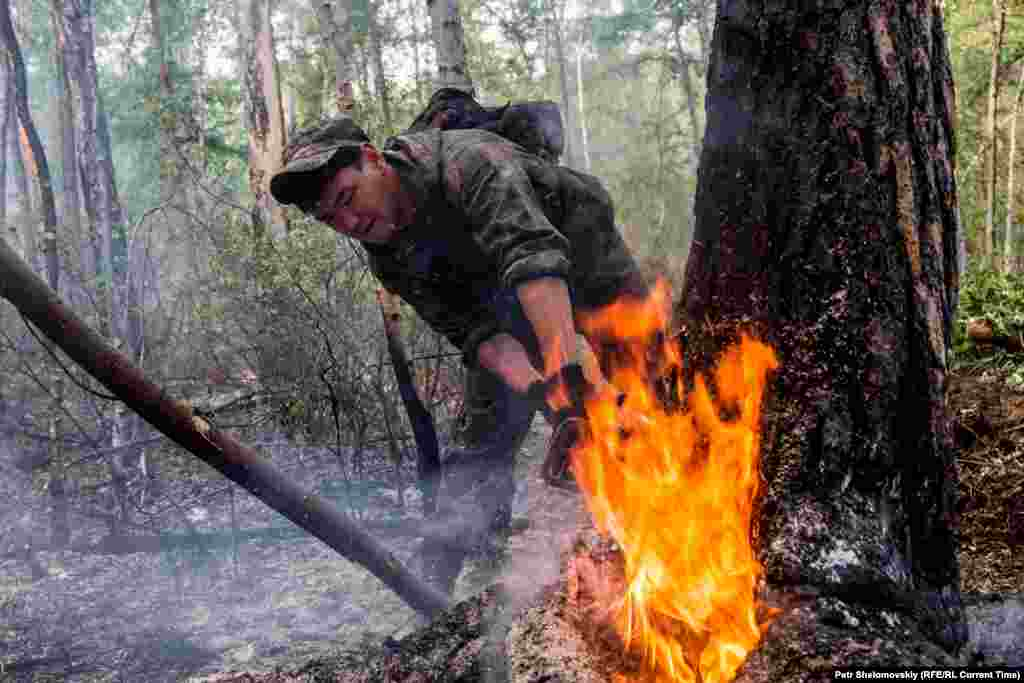 A firefighter races to cut down a burning tree before the fire spreads.