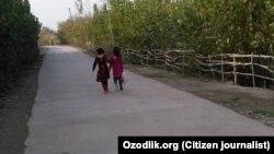 Ученицы младших классов одной из школ в Балыкчинском районе Андижанской области несут в школу пакет с собранным хлопком.