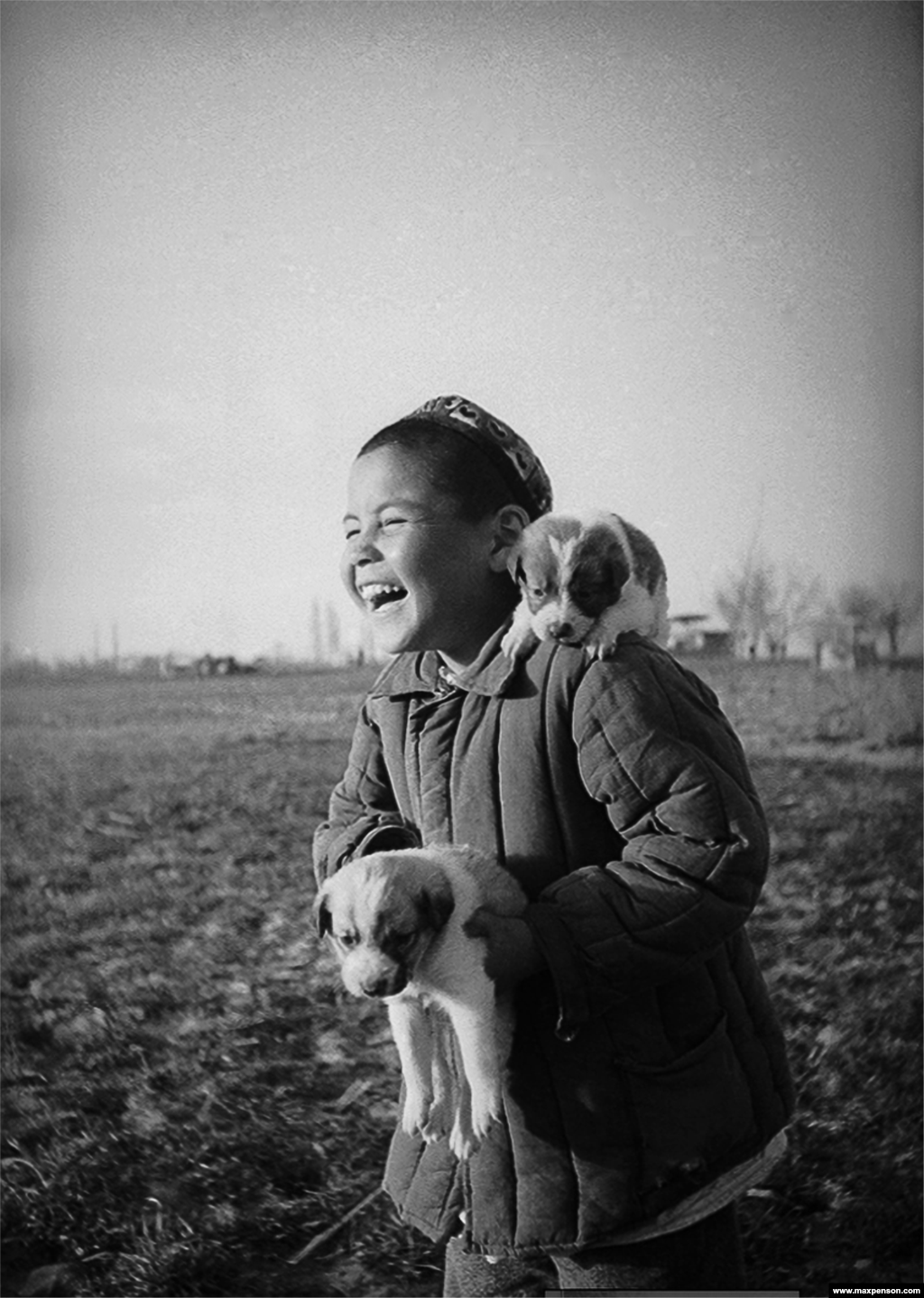 A boy with puppies on a collective farm.