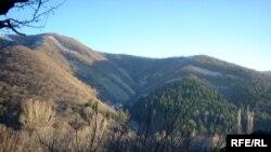Ущелье реки Дзама