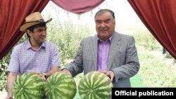 Tacikistan üçün seçim: ya ata Emomali Rahman, ya oğul Rustam