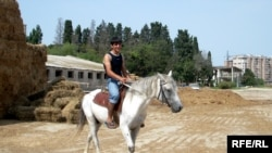 «Bakı Cıdır meydanında atlar idmançıların öz hesabına saxlanır»