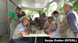 Город Ош. Аксакалы играют в шахматы в парке им. Навои, 28 мая 2019 г.