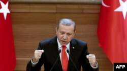 Turkish President Recep Tayyip Erdogan delivers a speech in Ankara in January.