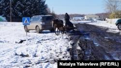 Большеречье, район Омской области