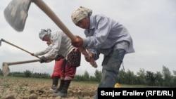 Сельские женщины юга Кыргызстана.