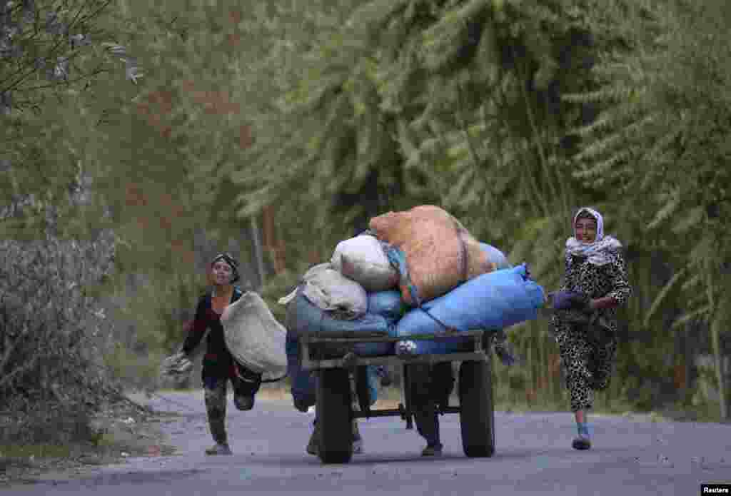 Locals bring their cotton harvest in from the fields near the village of Yakhak, Tajikistan. (Reuters/Nozim Kalandarov)