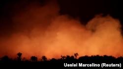 Горящая сельва в бразильском штате Амазонас. 17 августа 2019 года