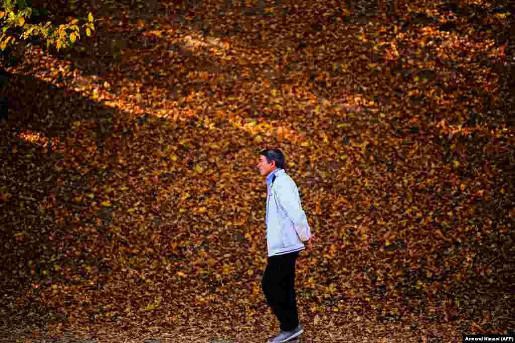 Мужчына на шпацыры ў парку сярод восеньскага лісьця. Прышціна, Косава.