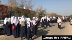Хиджаб киген оқушылар. Көрнекі сурет.