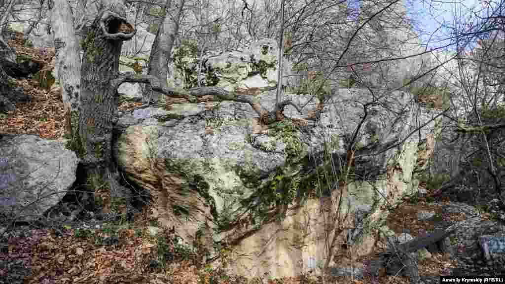 Лавка під скельним фрагментом біля стежки «Чортові сходи»
