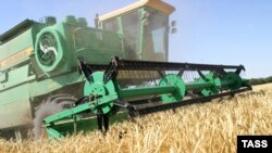 Reaping wheat in Russia's Vladimir region (file photo)