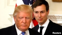 Trump-ın kürəkəni Jared Kushner də təhqiqat altındadır