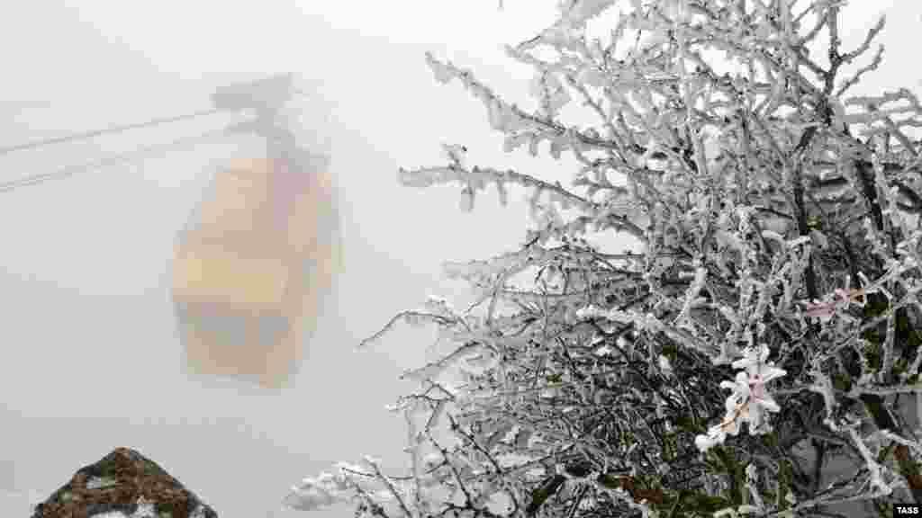 Плато Ай-Петрі в Ялті засипає снігом