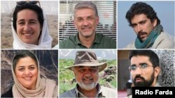 Iranian environmental activists (from top-left clockwise) Niloufar Bayani, Houman Jokar, Amirhossein Khaleghi, Taher Ghadirian, Morad Tahbaz, and Sepideh Kashani were jailed for six to 10 years.