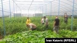 """Terapijska zajednica za liječenje ovisnika """"Ivan Merz"""" u Kiseljaku"""