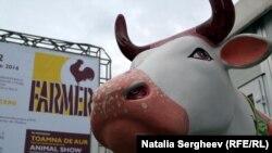 "La expoziția ""Farmer"" de la Chișinău"