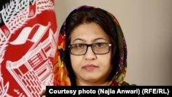ناجیه انوری٬ سخنگوی وزارت دولت در امور صلح