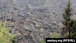 Часть Иле-Алатауского национального парка после пожара в августе этого года.