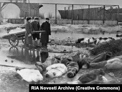 Un grup de bărbați colectează trupurile neînsuflețite ale victimelor asediului din Leningrad, octombrie 1942. Nereușind să captureze orașul, forțele naziste au înconjurat nordul orașului, încercând să înfometeze populația. Asediul a durat aproape doi ani și jumătate și a ucis aproximativ un milion de oameni.