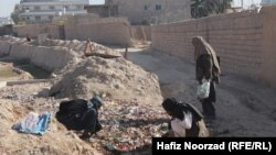 معتادان در حال جمعآوری زباله در فراه