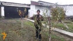 OZOD-VIDEO: 8 миллион доллари талон-тарож қилинган ўзбек фермери ҳикояси
