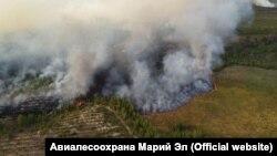 Дирекція Міністерства надзвичайних ситуацій Марій Ел заявила, що, за попередніми оцінками, територія, уражена лісовими пожежами, становить близько 120 гектарів, вогонь наблизився до кількох сіл і курортних місць біля озера Шап