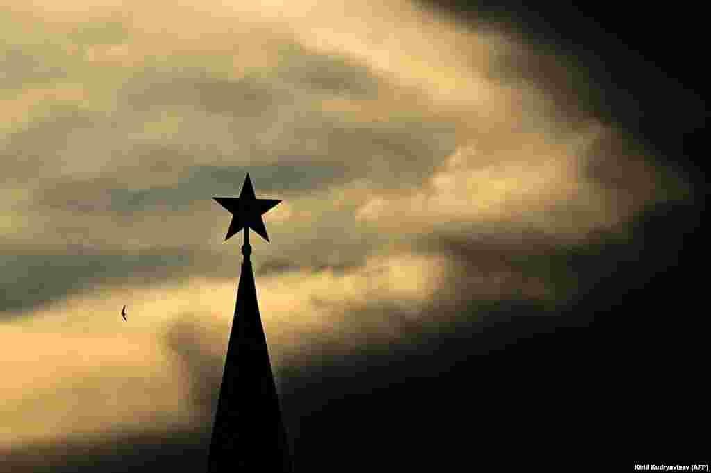 Птица летит перед рубиновой звездой на Спасской башне Кремля во время заката в центре Москвы