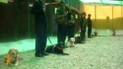 Pakistan Canine Unit To Sniff Out Terrorists