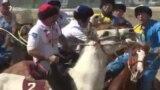 Чет өлкө үчүн ойногон кыргыз улакчылар