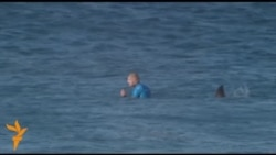 Нападение акулы на серфера