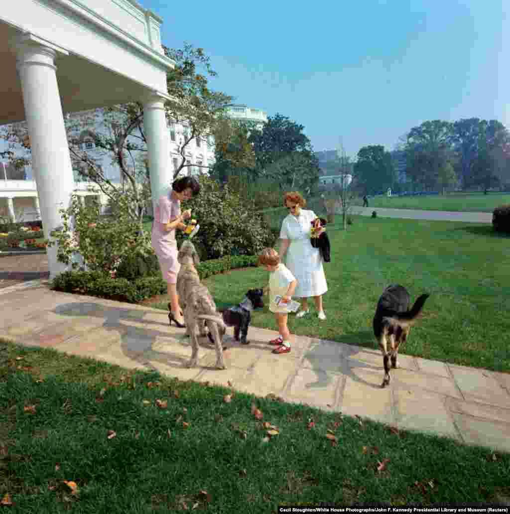 24 октября 1963 года. Джон Кеннеди-младший, сын 35-го президента США Джона Кеннеди, вместе с няней и секретаршей Эвелин Линкольн (слева) кормит собак семьи Вольфа (слева), Шеннона (в центре) и Клипера (справа) на дорожке у Овального кабинета Белого дома