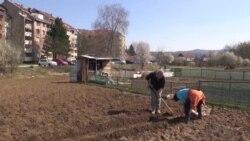 Gradski poljoprivrednici