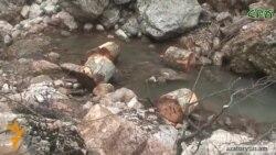 Բնապահպանները ահազանգում են՝ Տավուշի մարզում անտառապատ տարածքները նոսրանում են