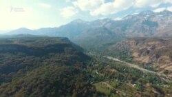 Арстанбап: элди баккан токой