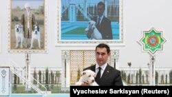 Serdar Berdimuhamedow Türkmen Alabaý itleri we Ahalteke atçylyk assosiasiýalarynyň prezidenti bolup durýar.