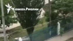 В Дагестане сотрудники полиции пытались застрелить корову