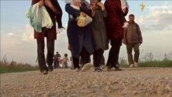 Угорський кордон закрили, біженці прямують у Хорватію