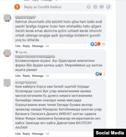 Комментарии, оставленные в соцсети Facebook.