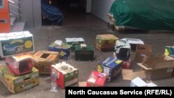 Активисты и добровольцы использовали коробки для транспортировки бездомных кошек
