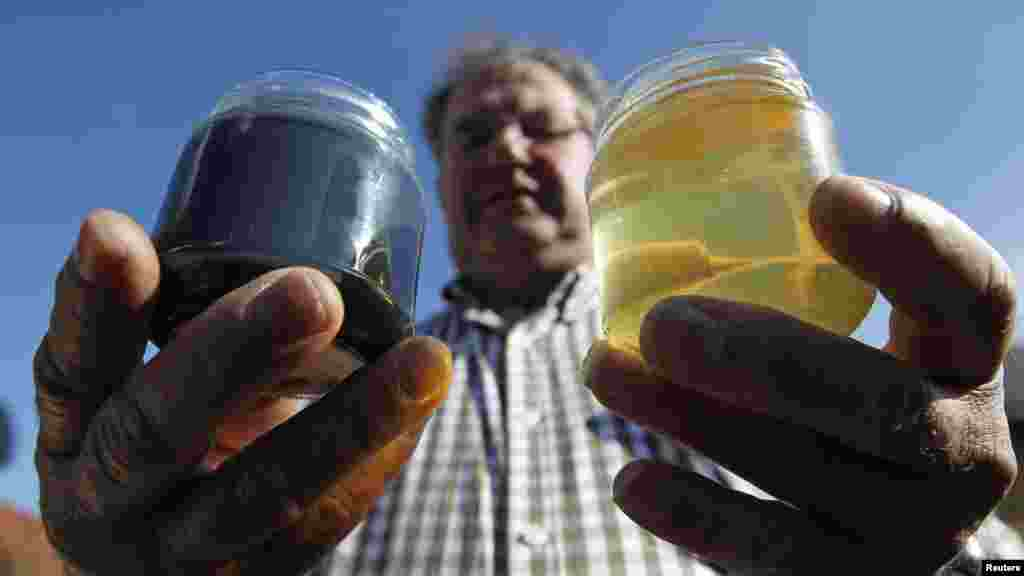 French beekeeper Andre Frieh holds a normal sample of honey (right) besides a green-colored one at his home in Ribeauville on October 5. Bees in northeastern France have been producing honey in mysterious shades of blue and green, alarming their keepers, who now point to residue from containers of M&M's candy processed at a nearby plant as the cause. (REUTERS/Vincent Kessler)