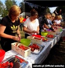Фестиваль полуниці у Залускі