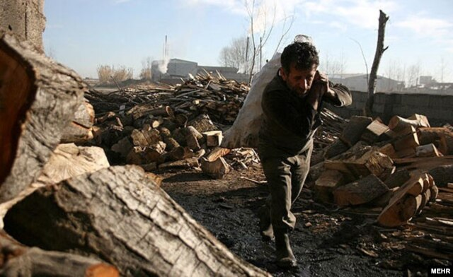 دلایل گوناگونی در روند تخریب جنگلهای زاگرسی دخیل عنوان شدهاند؛ از جمله بهرهبرداری فزاینده از چوب درخت بلوط